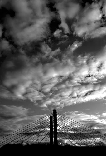 Tacoma Postcard, by Steve Naccarato - CABLE STAY BRIDGE