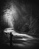 Photograph by Nicholas Bell, Ethereal Lane No. 2, available from Zatista.com