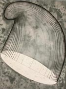 Artwork by Martin Puryear prints on exhibition at Greg Kucera Gallery in Seattle, September 3 - Nov 1, 2014