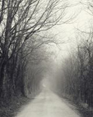 Artwork by Nicholas Bell, Appalachian Backroad in Winter, available from Zatista.com