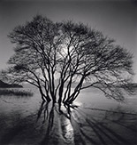 Photograph by Michael Kenna at Catherine Edelman Gallery, Chicago, Jan 11 - March 16, 2019, 010919
