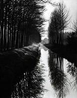 Photograph by Brett Weston available from Photography West Gallery in Carmel, CA, May 2020, 050420