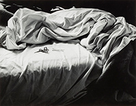 Photograph by Imogen Cunningham on exhibition at Smart Museum of Art in Chicago, IL, Oct 1 - March 21, 2021, 120820