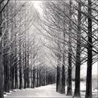Photographs by Michael Kenna available from Stephen Wirtz Gallery in San Francisco